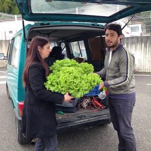 image : jardiniers solidaires - Coneils de quartier Mont de Marsan