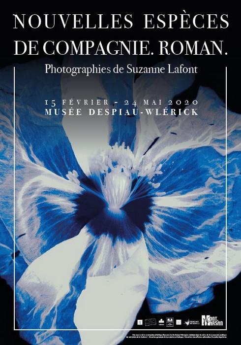 image : Affiche Expo Nouvelles espèces de compagnie. Roman. Suzanne Lafont - Musée Despiau Wlérick